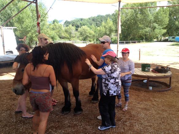 equitation adapté handicap diois drome drôme menglon.jpeg